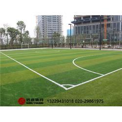 专业标准足球场施工建设及足球场围网灯光建设批发