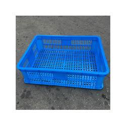 天津塑料筐-专业供应宁波塑料筐图片