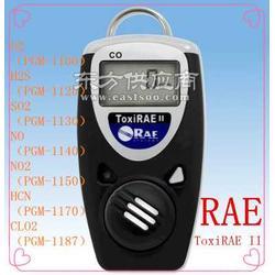 PGM-1100氧气O2含量检测仪 RAE分析仪图片