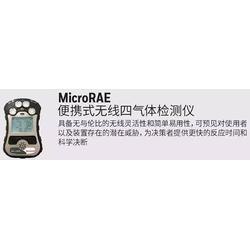 华瑞PGM-2680 MicroRAE扩散式四合一气体检测报警仪图片