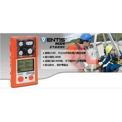 山东供应英思科MX4煤矿用瓦斯二氧化氮气体检测仪图片