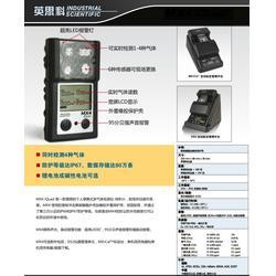英思科MX4高精度四合一气体检测仪美国原装进口现货图片