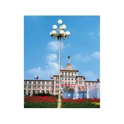 安徽中华灯-怎样才能买到不错的中华灯图片