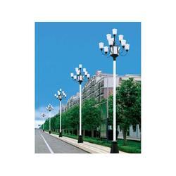 安徽中华灯-怎样才能买到口碑好的中华灯图片