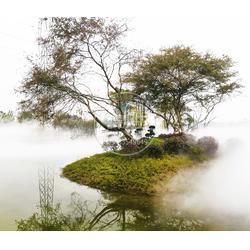 人造雾生态负氧雾 环保冷雾境园林景观图片