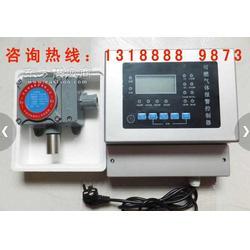 氢气检测仪正规厂家销售图片