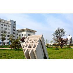 护理学校哪家好-专业的青岛护理学校在青岛图片