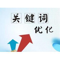 邯郸网站优化服务-河北有保障的邯郸网站优化推荐图片