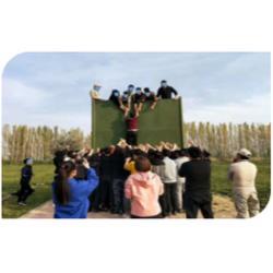 石嘴山团队拓展训练-宁夏团队拓展训练服务怎么样图片