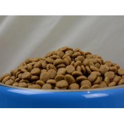 寵物零食供應-山東哪里供應的貓糧實惠圖片