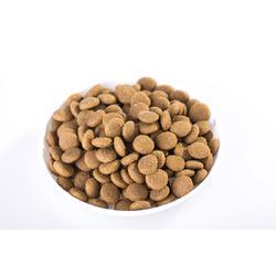 狗粮贴牌生产-品质好的猫粮哪里有卖图片