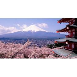 铁岭日语培训-值得信赖的日语培训推荐图片