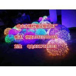 广场草地装饰 公园亮化 立体造型灯 街道滴胶灯灯光节厂家图片