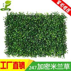 247加密米兰塑料花植物草仿真草皮背景装饰绿化墙体图片