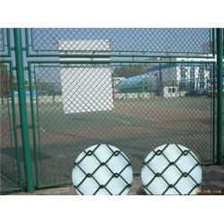 厂家供应运动场围栏网 篮球场护栏网 足球场围网 量大优惠图片
