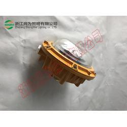 SW7151防爆LED泛光灯防腐性好,附着力强图片