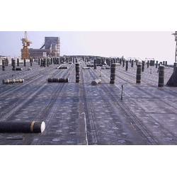 庆阳防水工程公司-兰州专业的兰州防水工程公司是哪家图片