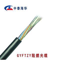阻燃光缆 阻燃光缆型号 GYFTZY-24B1