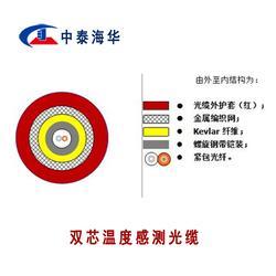 双芯温度感测铠装光缆 ZTGKDH-2A1b 中泰海华光缆直销图片
