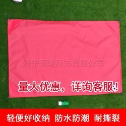 跨境货源 野餐垫,沙滩席,口袋毯 可定制尺寸LOGO户外用品图片