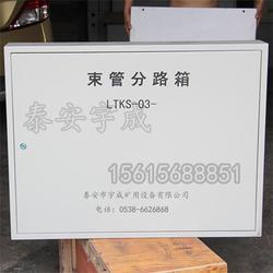 矿用防爆束管分路箱,PE束管分路箱图片