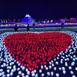 LED灯光节郁金香地插灯 公园小区亮化 kiss少年图案灯图片