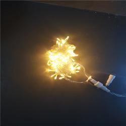 节日商场亮化 LED灯光装饰灯 满天星灯串 10M100灯图片