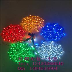 LED双向灯 LED双面灯 灯杆造型灯串 双面发光的LED灯 LED造型灯专用灯带图片