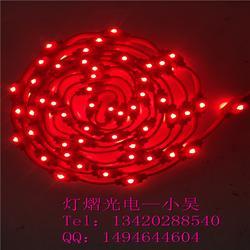 节日装饰彩灯 LED双向灯 双面发光灯杆造型灯 街道兜帘灯图片