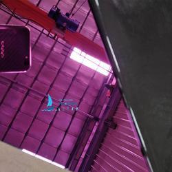 304不锈钢镜面板不锈钢电镀紫红色星级酒店幕墙装饰板图片