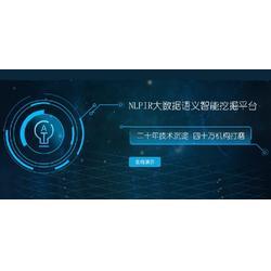 NLPIR系统的中文语义分析模式介绍