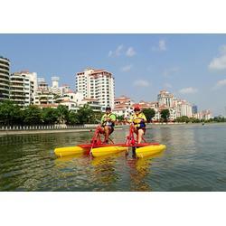 烟台脚踏船-专业的烟台全塑休闲艇供应商图片