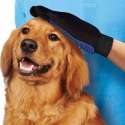 按摩神器蓝色梳子狗刷子去浮毛按摩洗澡清洁宠物用品手套通用包邮图片