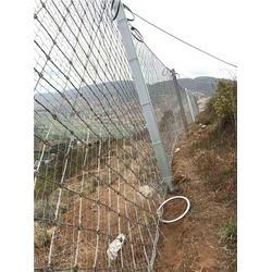 贵州被动防护网厂家-被动防护网厂家-成都俊川科技图片