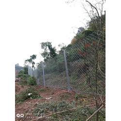 被动防护网-成都俊川科技30年-成都rxi-075被动防护网