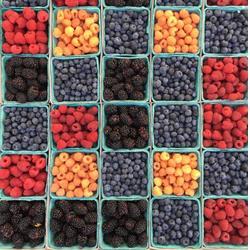 10年报关员教您菲律宾水果进口如何报关