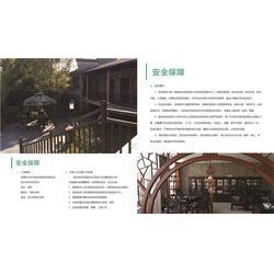 南昌乐晨教育 儿童记忆力暑假课-江西记忆力图片