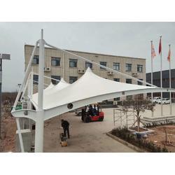 膜结构雨棚 张拉膜羽毛球场厂家图片