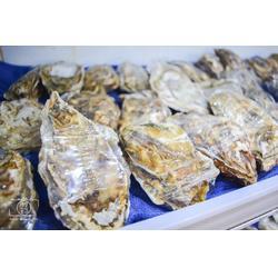 贝拉生蚝厂商-高品质贝拉生蚝就找贝拉水产图片