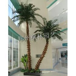 厂家定做仿真大型景观海藻树 玻璃钢商场酒店机场椰子树 假大树图片
