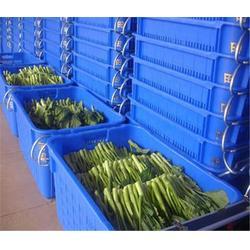 生鲜水果配送-水果配送-万家欢公司图片