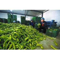 南海粮油配送-万家欢企业-粮油配送怎么样图片