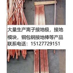 铜包钢绞线长效图片