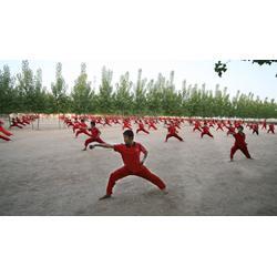 大名河北武术学校-河北靠谱的武术散打培训图片