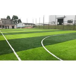 博纳人造草坪足球场草坪运动仿真草坪图片