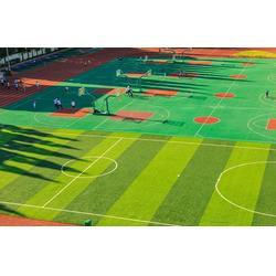 人造草坪已经占领足球场一般市场图片