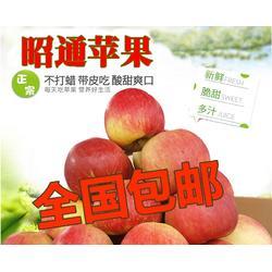 现摘糖心苹果-丑苹果新鲜水果图片