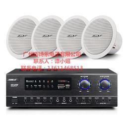 定阻吸顶喇叭会议室音响套装组合公共广播天花背景音乐功放系统BX206音箱两对图片