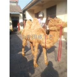沙漠之舟仿真骆驼模型