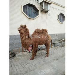 仿真仿生骆驼模型图片